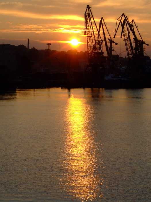 Sunset for Odessas cranes